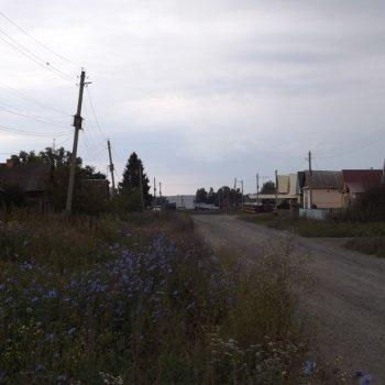 с. Труслейка, 5 км. по асфальтовой дороге от Инзы